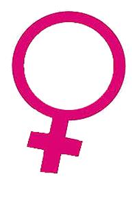 Bancada feminina do Congresso Nacional define pautas para combater violência de gênero